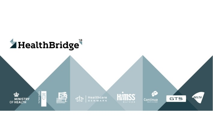 Health Bridge 2013
